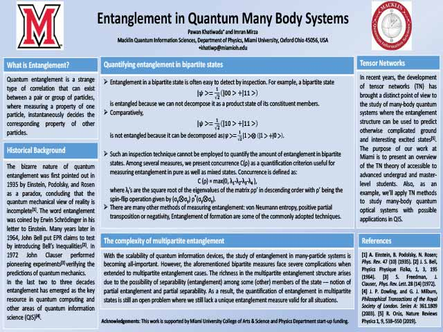 Entanglement in Many-body Quantum Systems